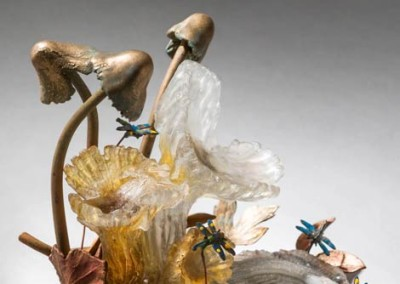 Mushrooms and Dragonflies
